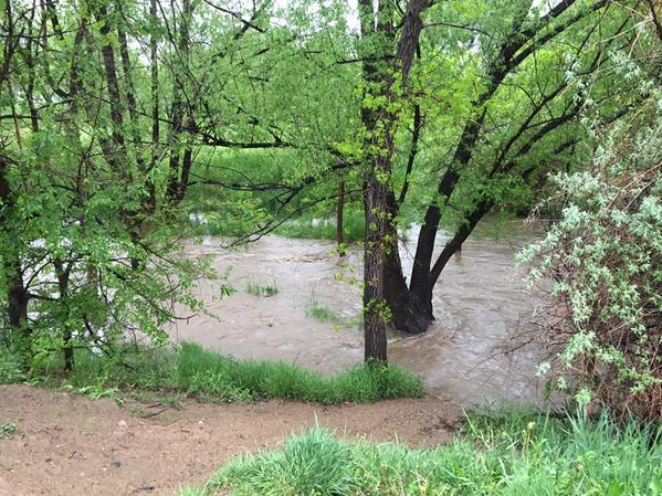 Current view of Bear Creek in South Boulder, approaching flood stage