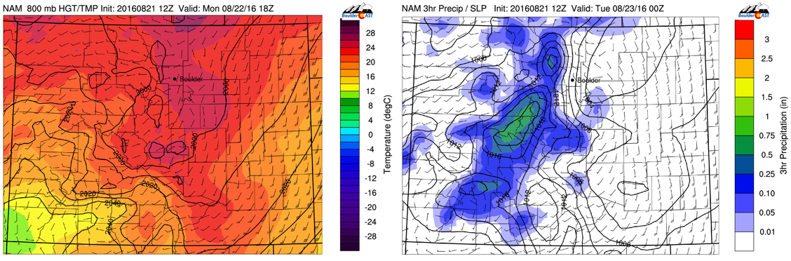 NAM near surface temperature (left) and precipitation for this evening (right)